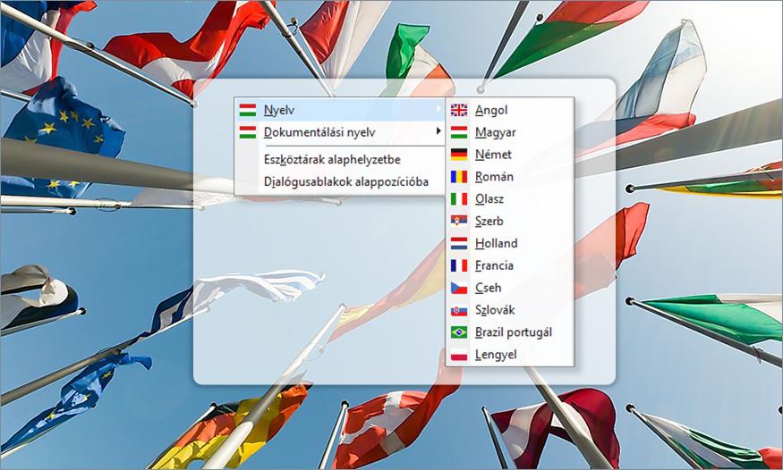 AxisVM 12 nyelv